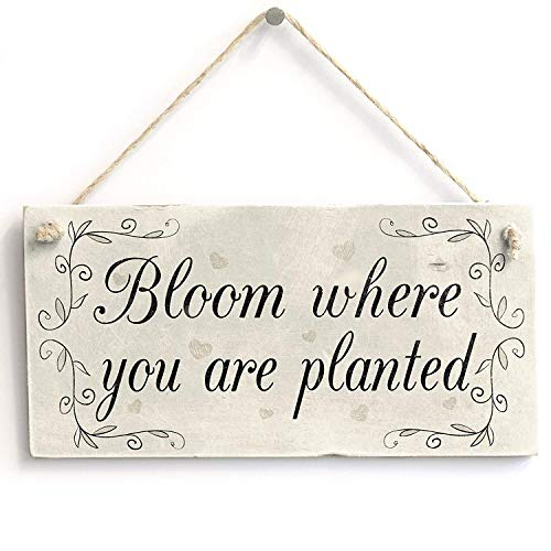 (in the Ivy Bloom Where You are Planted Motivational Wooden Gardening Home Decor Sign Wood Hanging Sign Wall Door Plaque Sign Gifts)