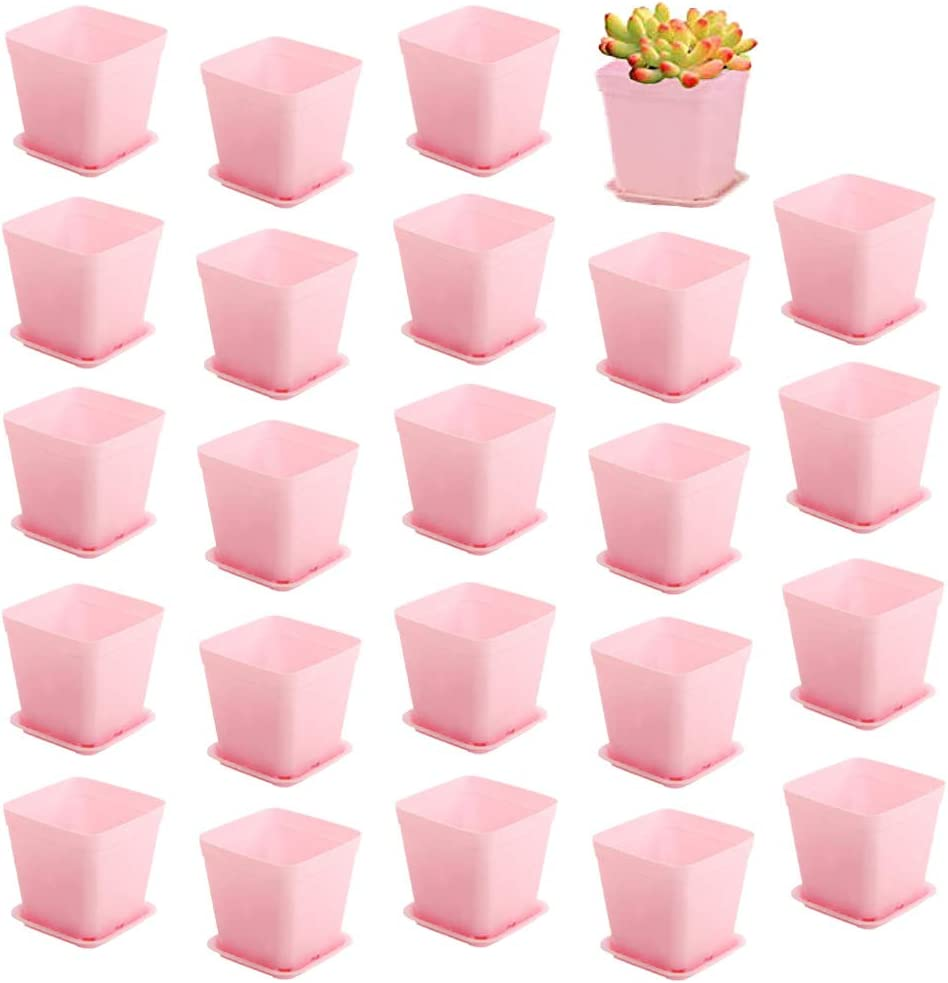 Panxxsen 24 PCS 3 Inch Plastic Plant Pot with Saucer,Square Nursery Flower Pots,Garden Seedlings Nursery Pot with Saucer for Home,Office and Garden(Pink)