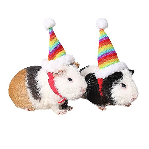 Small Pet Hat Colorful Rainbow Style Christmas Costume Fancy Dress Up for Hamsters Chinchillas Other Small Animals -