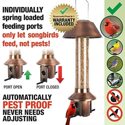 "Roamwild PestOff Squirrel Proof Wild Bird Feeder Mixed Seed Sunflower Heart Version – Antique Copper - 3LBS Seed Capacity – 20.5""x7.5""x7.5"" (w/Hanger)"
