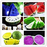 buy 2017 Watermelon seeds 50pcs fruit vegetable seeds Garden Home plant Blue Yellow Green Watermelon Purple now, new 2018-2017 bestseller, review and Photo, best price $8.99