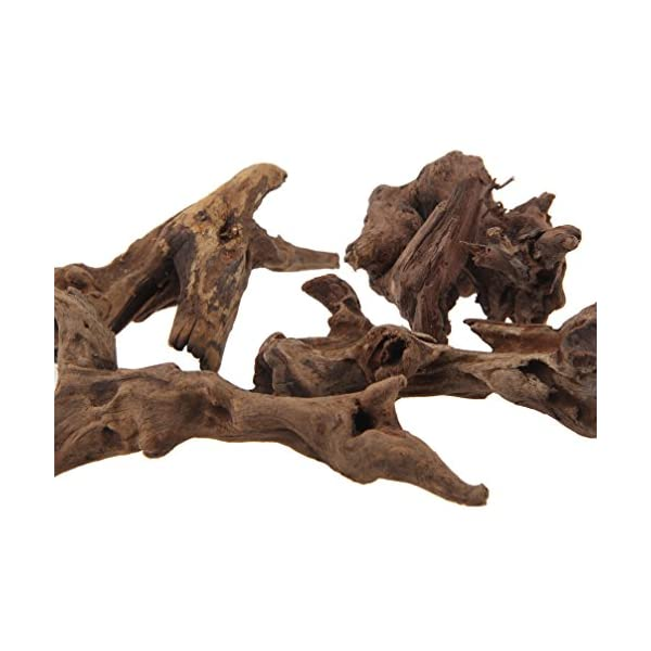 emours Natural Driftwood Branches Reptiles Aquarium Decoration Assorted Size,Small,4 Pieces 3