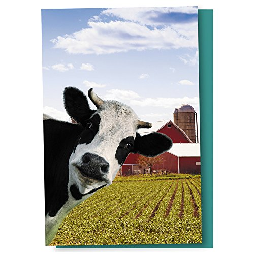 (Tree-Free Greetings EcoNotes 12 Count Cow Photobomb All Occasion Notecard Set with Envelopes, 4 x 6 Inches (FS56364))