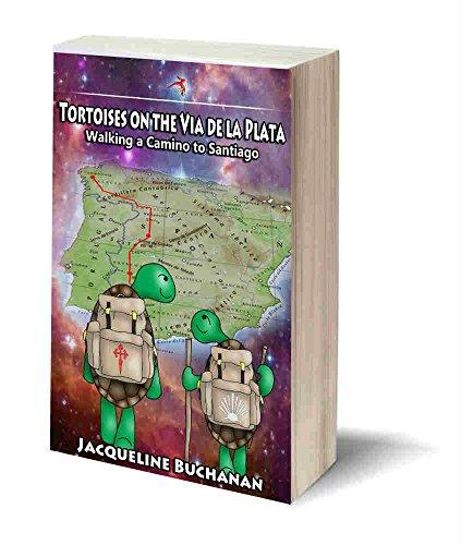 tortoises-on-the-via-de-la-plata-walking-the-camino-to-santiago