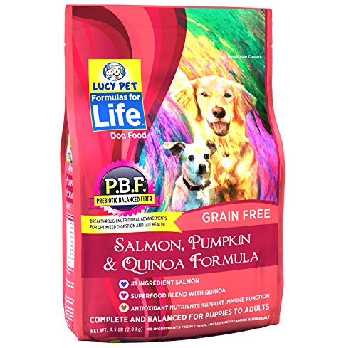 Lucy Pet Formulas Life Salmon, Pumpkin & Quinoa Dog Food, 4.5 LB Review