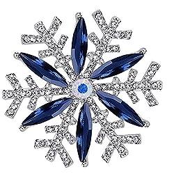 Sliver Pearl Crystal Brooch