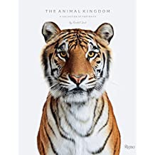 Animal Kingdom: A Collection of Portraits