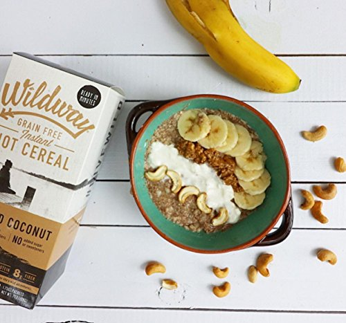 Wildway Vegan Hot Cereal | Toasted Coconut | Certified Gluten Free Instant Breakfast Cereal, Low Carb Snack | Grain-Free, Keto, Paleo, Non-GMO, No Artificial Sweetener | 2 pack