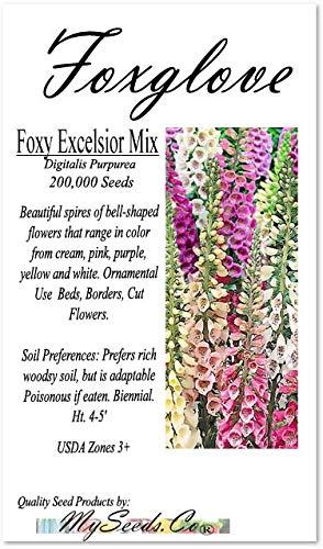 Big Pack - (200,000+) Foxy Excelsior Mix Flower Seeds - Digitalis Purpurea Flower Seeds - Full Sun to Shade - Foxglove Zones 3-9 - Flower Seeds by MySeeds.Co (Big Pack - Foxglove Excelsior Mix)