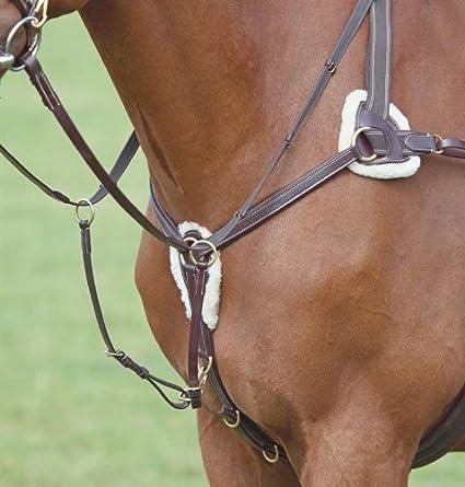 Vorderzeug 5-Punkt. Erhältlich in den Grö?en: Cob oder Warmblut; Farben:Schwarz oder (Rot)braun William Hunter Equestrian
