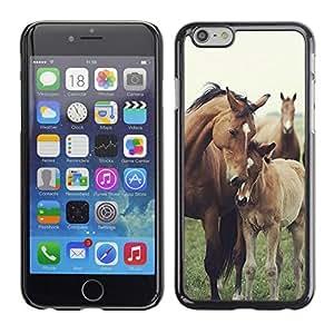 FlareStar Colour Printing Horse Cub Nature Foal Animal Summer cáscara Funda Case Caso de plástico para Apple (4.7 inches!!!) iPhone 6
