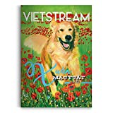 img - for VietStream Lunar New Year 2018 book / textbook / text book