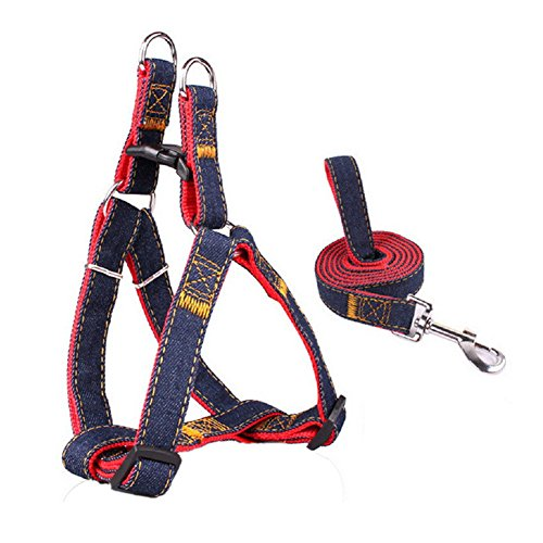 PYRUS Supplies Adjustable Training Harnesses