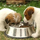 Cheap Stainless Steel Dog Bowls Water Bowls For All Pets Dog Food Bowls Rust Resistant