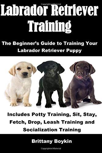 Download Labrador Retriever Training: The Beginner's Guide to Training Your Labrador Retriever Puppy: Includes Potty Training, Sit, Stay, Fetch, Drop, Leash Training and Socialization Training pdf