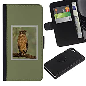 A-type (Owl Green Branch Feathers Wings Spring) Colorida Impresión Funda Cuero Monedero Caja Bolsa Cubierta Caja Piel Card Slots Para Apple Iphone 5 / 5S
