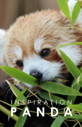 Read Online Inspiration Panda: Notebook  Inspiration Pad pdf epub