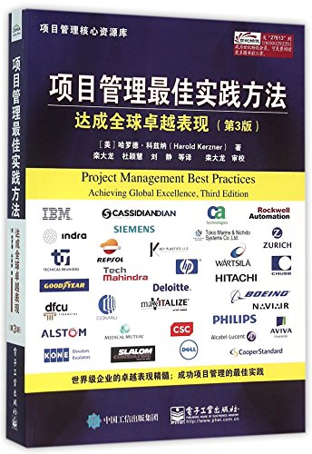 Project Management Best Practices: Achieving Global Excellence (Chinese Edition)