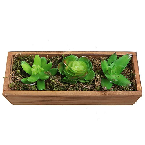 Planter Artificial Succulent Rectangular Container