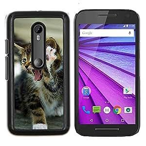 TECHCASE---Cubierta de la caja de protección para la piel dura ** Motorola MOTO G3 ( 3nd Generation ) ** --Gatito de la pata del león del rugido feroz gato