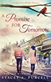 A Promise For Tomorrow (A Cardinal Point Holiday Romance)