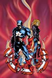 img - for Captain America: Land of the Free (Captain America (Paperback)) book / textbook / text book
