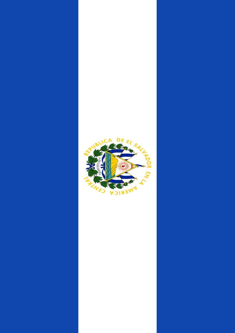 Toland Home Garden Flag of El Salvador 28 x 40 Inch Decorative Country Nation House Flag