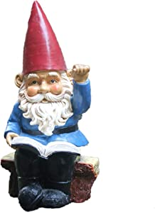AOOROBE Garden Gnome Sculpture,Resin Read A Book Beckon Statue Art Gift for Decoration Full Color Shop Window Lawn Ornaments Blue 24cm(9inch)