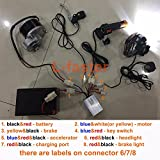 L-faster 250W Electric Conversion Kit for Common