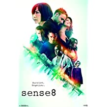 "Trends International Sense8-One Sheet Season 2 Wall Poster, 22.375"" x 34"", Multicolor"