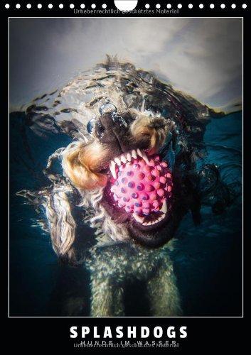 Splashdogs - Hunde im Wasser (Wandkalender 2014 DIN A4 hoch): Faszinierende Unterwasserfotografien von Hunden (Monatskalender, 14 Seiten)
