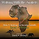 Walking with the Analysts Audiobook by David A. Mallach Narrated by Dave Giorgio