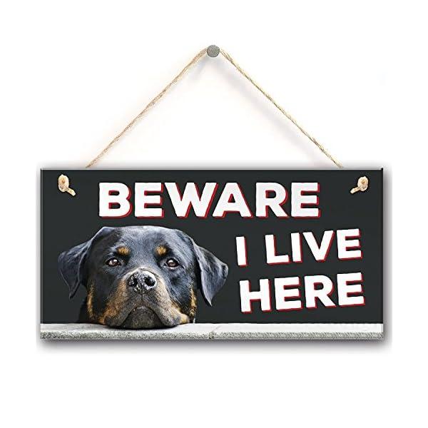 "Meijiafei Beware I Live Here Rottweiler Hanging Outdoor Dog Warning Sign Gate Security Plaque 10""X5"" 1"