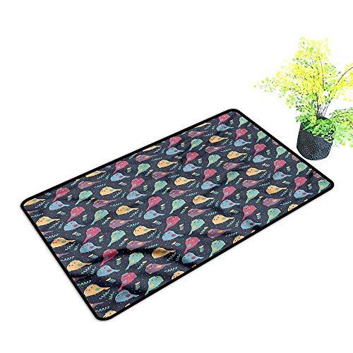 Door mat Birds,Chubby Birds Cheerful Happy Dress Up Your Doorway,H23xW35 inch ()