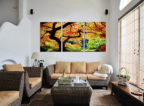 US JAPANESE MAPLE TREE/Portland Japanese Garden Ready to Hang 3 Panel Set Wall Art Prints Mounted on Fiberboard Waterproof Canvas/Better than Gallery Wrap Canvas/20x28x1