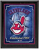 "Cleveland Indians Team Logo Sublimated 10.5"" x 13"" Plaque - MLB Team Plaques and Collages"