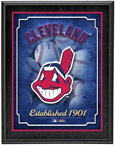 (Cleveland Indians Team Logo Sublimated 10.5