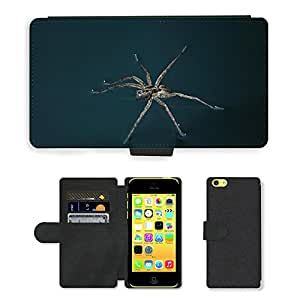 Super Stella Cell Phone Card Slot PU Leather Wallet Case // M00148499 Spider Spider On The Water Insect // Apple iPhone 5C