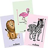 Measuring With Cubes - Zoo Animals Cards Set