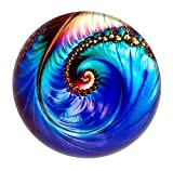 Nautilus Art Under Glass Paperweight (Wind)