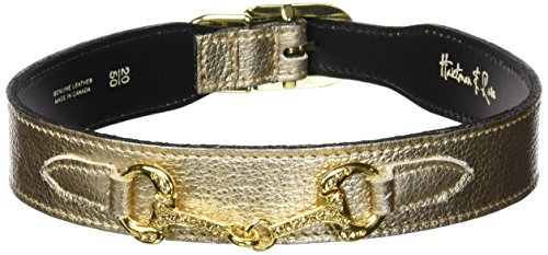 Hartman & Rose Horse and Hound Dog Collar, 20 to 22-Inch, Metallic Gold