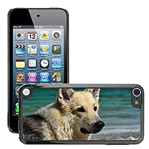 Print Motif Coque de protection Case Cover // M00125951 Híbrido del perro de agua // Apple ipod Touch 5 5G 5th