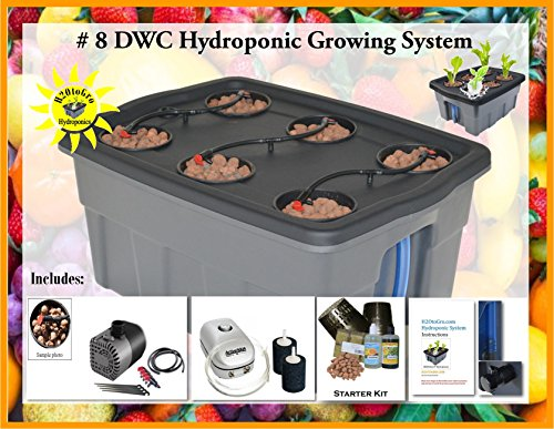 Hydroponic Complete Plant Growing System SELF-WATERING DWC BUBBLER #8-6 H2OtoGro by H2OToGro