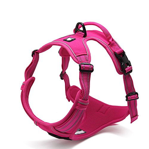 Pettom No-Pull Dog Harness Safe Control Reflective Outdoor Adventure Pet Vest Harness with Padded Handle(L(Chest Size:27-32), Rose)