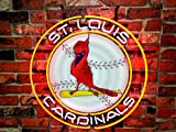 Desung 24'x24' St Louis Sports Team ST Cardinal Neon Sign Light HD Vivid Printing Tech Handmade Man Cave Beer Bar Pub Lamp VD33