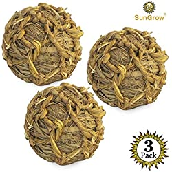 SunGrow Natural Seagrass Ball - Perfect & Safe Chewable Teething Activity Toy for Rabbits, Cats, Hamsters, Gerbils, Chinchilla, Birds, Guinea Pig, Dwarf Bunny and Mice : Healthy for Your Pet's Gums &