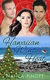Hawaiian Winter Heat: An MMF Erotic Romance
