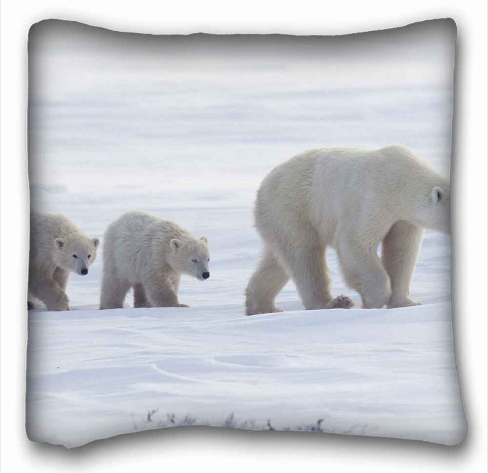 Custom ( Bears Animal Polar Bear ) Custom Cotton & Polyester Soft Rectangle Pillow Case Cover 16x16 inches (One Side) suitable for King-bed PC-Bluish-2994 Bluish Dragon Co. Ltd