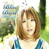 BLUE BIRD by Terumi