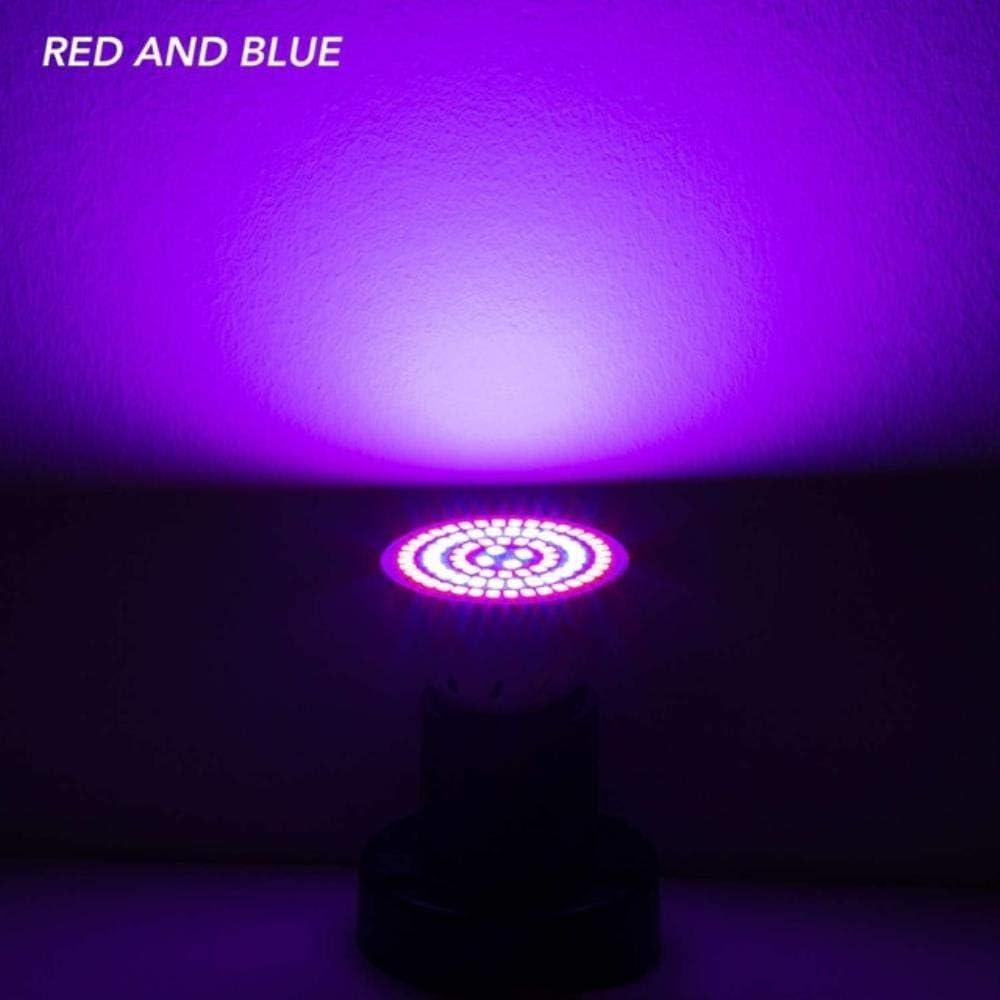 LED Plant Grow Light, E27 Led Plant Light E14 Grow Bulb Gu10 Led 220V Seedling Lamp Mr16 Fitol Lámpara Led Phyto Lámpara para Interior Grow Box, Rojo y Azul, E14 60Leds 220V